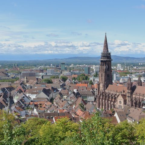 DOS and DON'TS in Freiburg